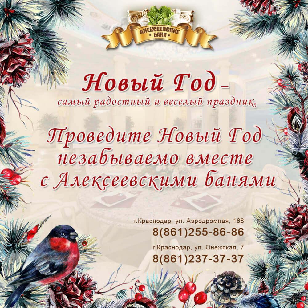 новый год с Алексеевскими банями